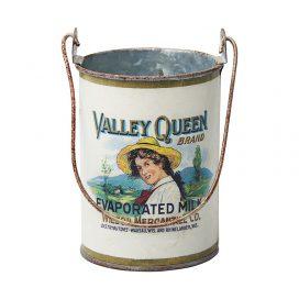 Tin – Hanging Valley Queen