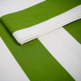 Runner – Stripe Thick Green and White