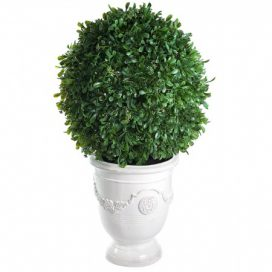 Topiary in Pot – Cream