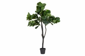 Plant – Fiddle Leaf Fig Large